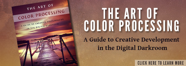 The Art of Color Processing