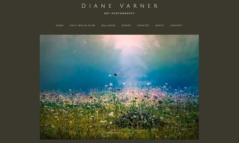 portfolio Diane Varner
