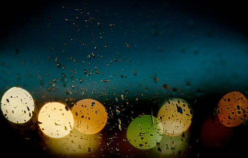 Beautiful Examples of Bokeh Photography