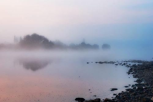 Misty Morning Photography
