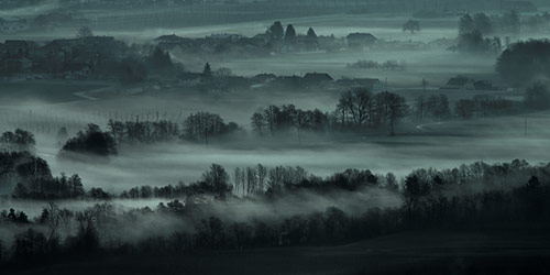 Misty Morning Photography