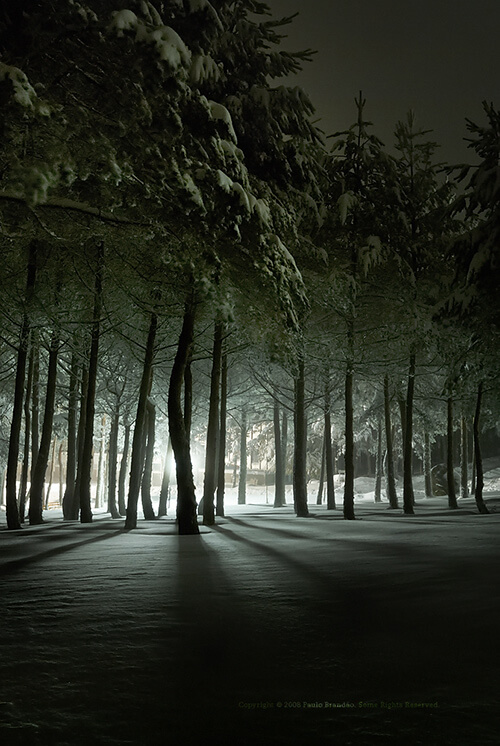 Shooting Nighttime Landscapes
