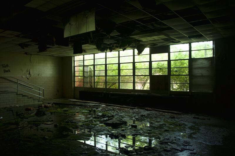 urban decay asylum