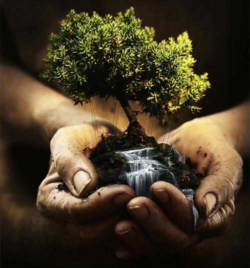 La terre au creux des mains
