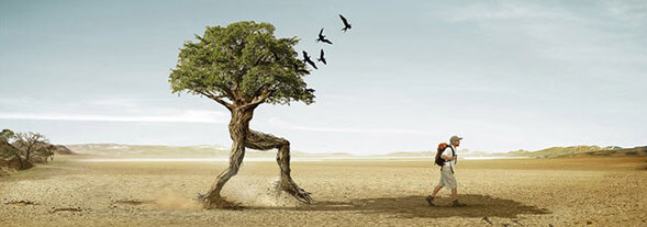 40 Masterful Examples of Photo Manipulation | dazzle wallpaper