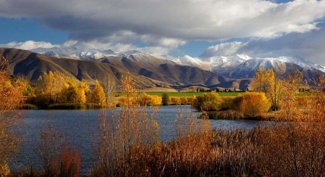 Bernard Spragg. NZ - Golden Season