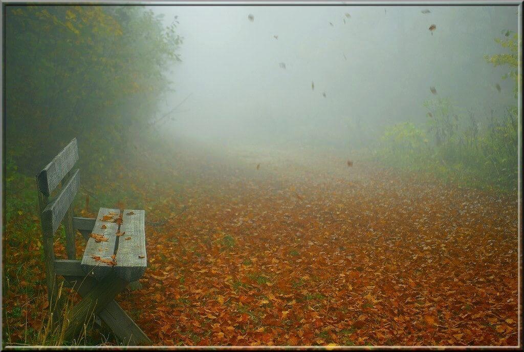 Jean-Daniel Echenard - Autumn atmosphere