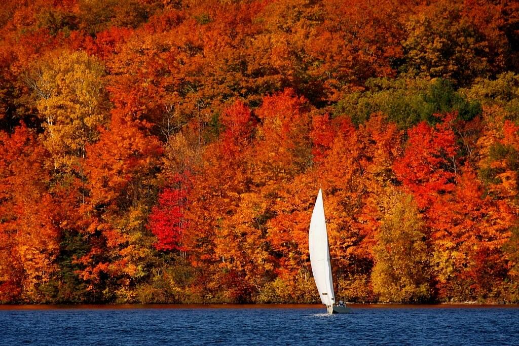 Martin Cathrae - Autumn Sailboat