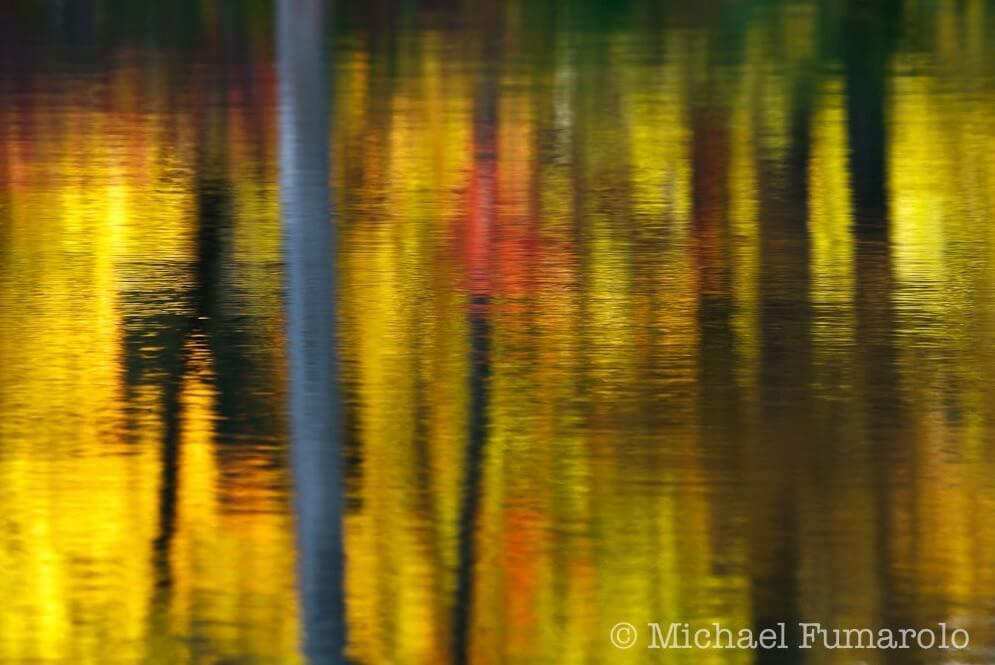 Michael Fumarolo - Autumn Reflections on Sterling Pond