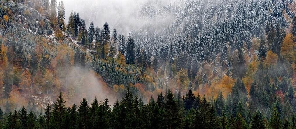 Julio López Saguar - Alps in autumn