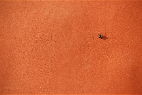30 marvelous examples of minimal photography for What is minimalism