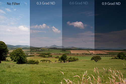 Landscape Techniques