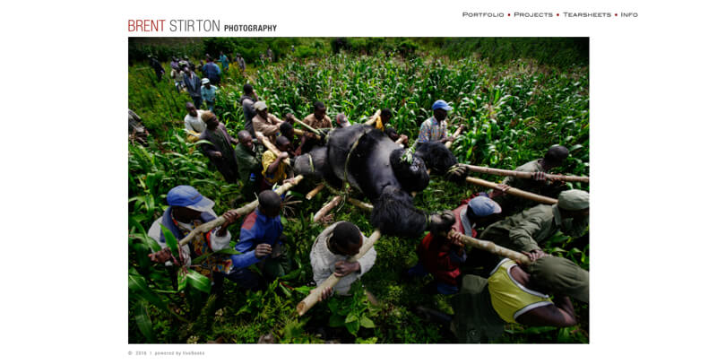 Photography portfolio website Brent Stirton