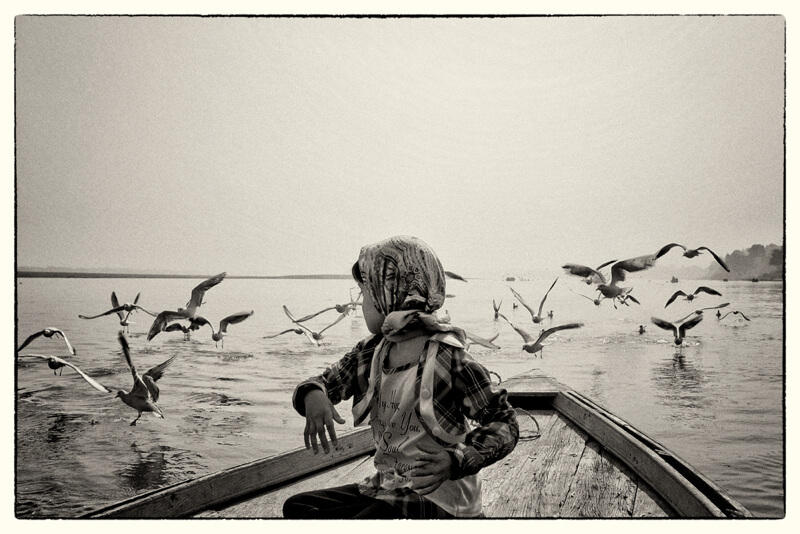 black and white boat with birds