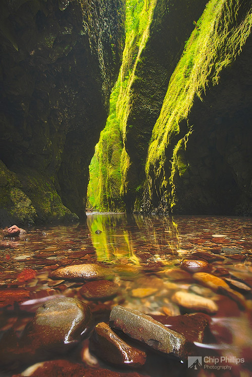 Oneonta-Gorge-Reflections-M