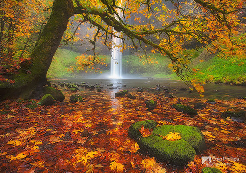 Silver-Falls-Autumn-M