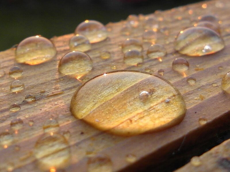 rain drops on wood
