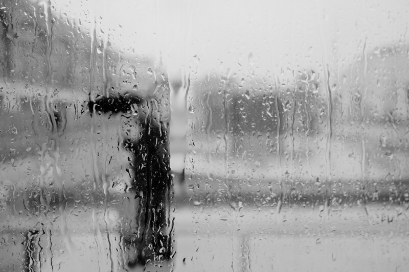 person with umbrella in the rain