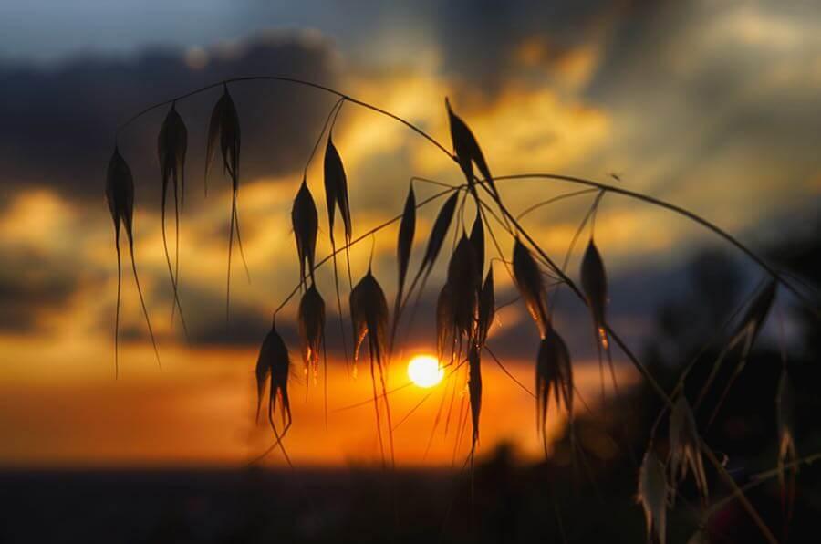 marco monetti - sunset