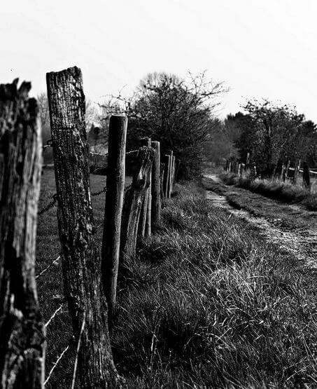 fence photography