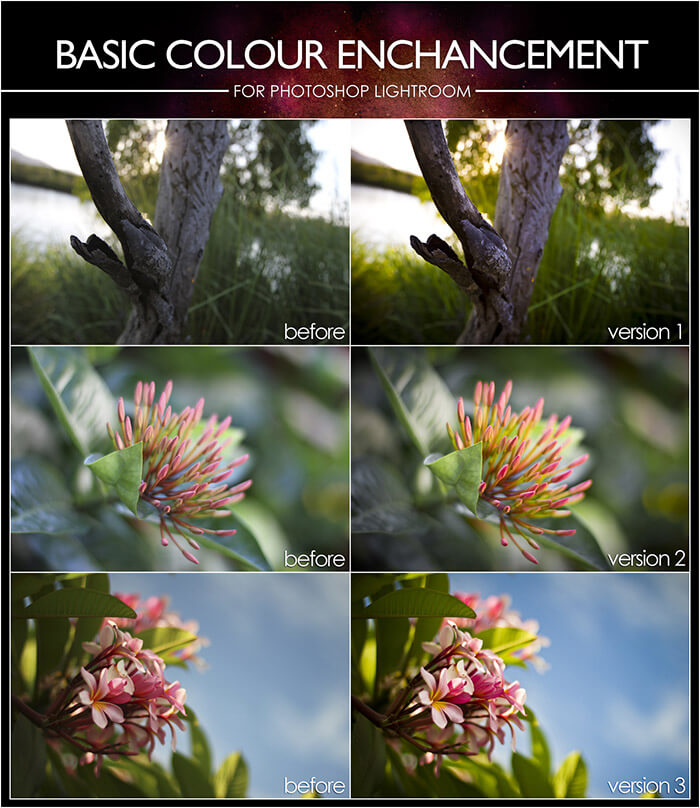 Basic Color Enhancement Lightroom Presets