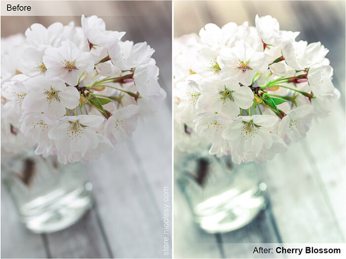 Cherry Blossom Lightroom Preset