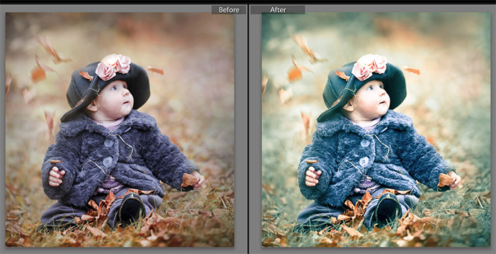 Organic Lightroom Preset