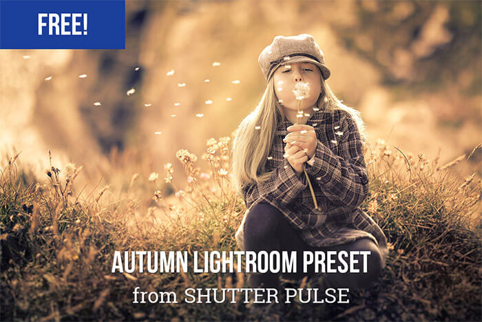 Autumn Lightroom Preset