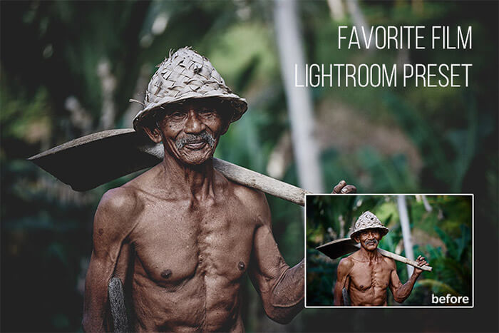 Favorite Film Lightroom Preset