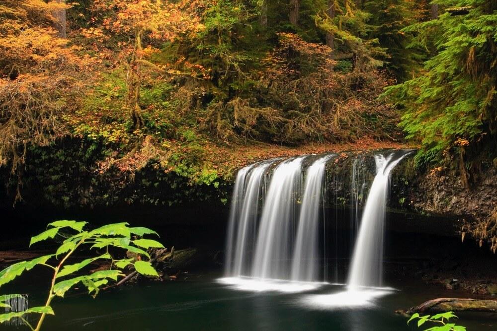 Ian Sane - Upper Butte Creek Falls
