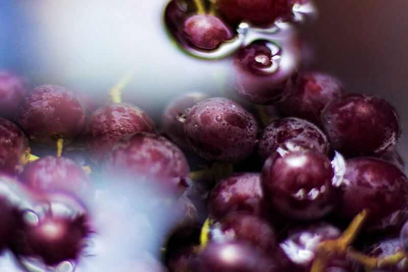 still life photography grapes in water