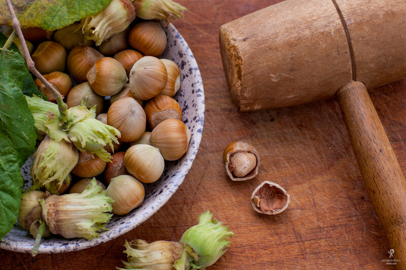 still life photography hazelnuts