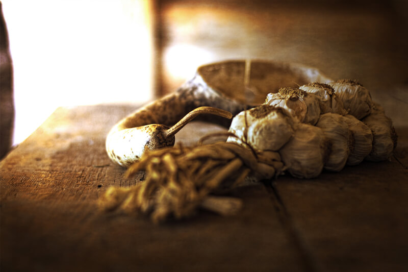 still life photography garlic and dust