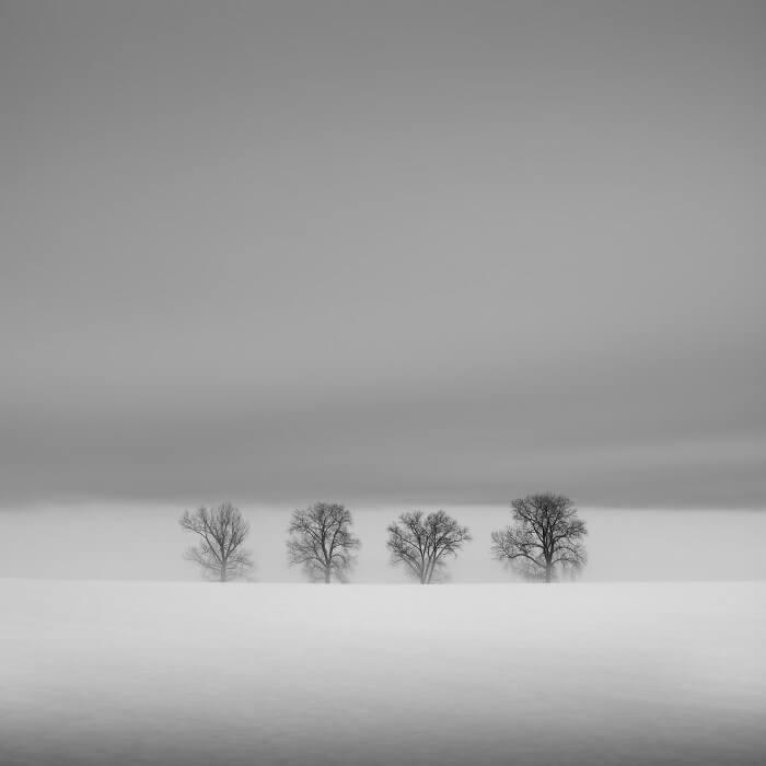 Jaromir Hron - Quartet