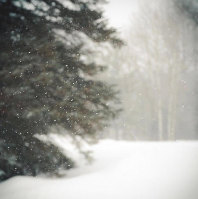 R Casey - snow days