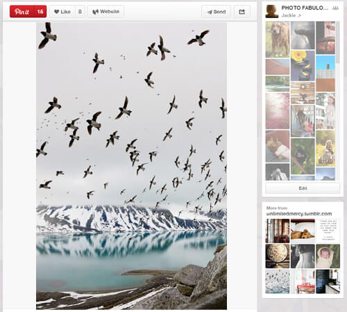 30 Creative Photography Pinterest Boards You Should Follow 29