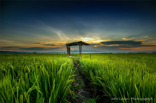 20 Wonderful Early-Morning Photography Examples for ...