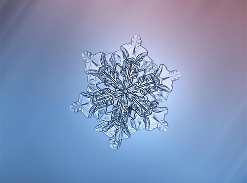 Close up of snowflake