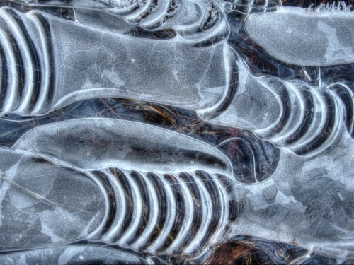 Abstract Ice Photography 3