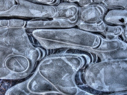 Abstract Ice Photography 11