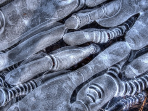Abstract Ice Photography 12
