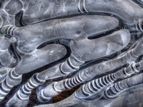 Abstract Ice Photography 1