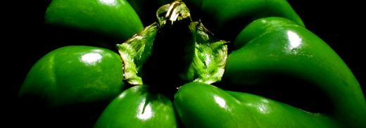 Green-Pepper---2B