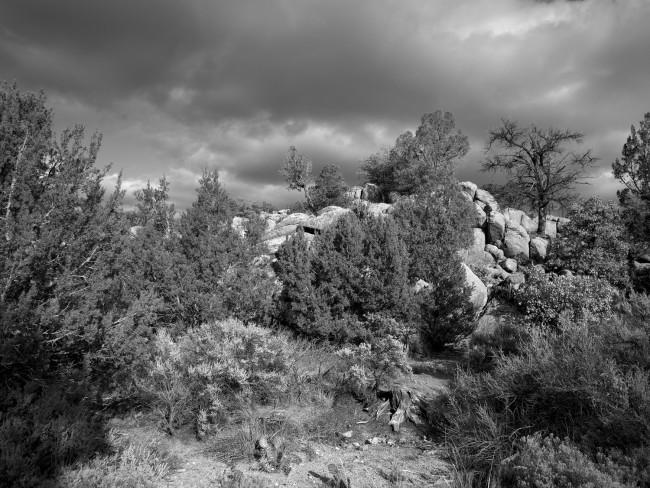 New Mexico Trail Head