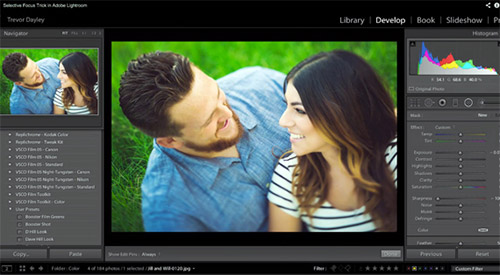 How to Create Selective Focus in Lightroom