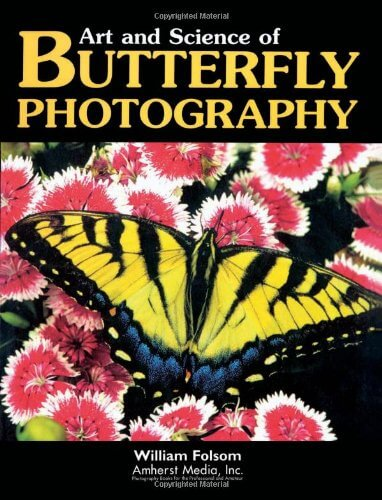 art and science butterfly photography