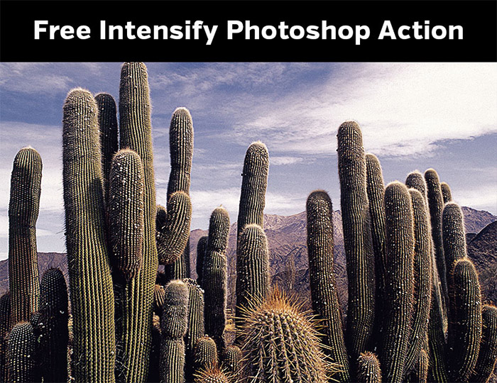Intensify Photoshop Action