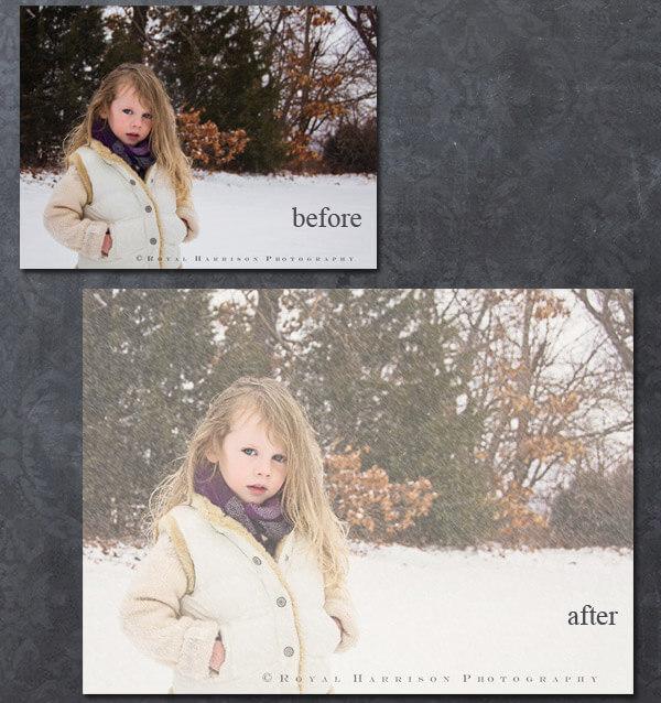 Snowy Dreams Action