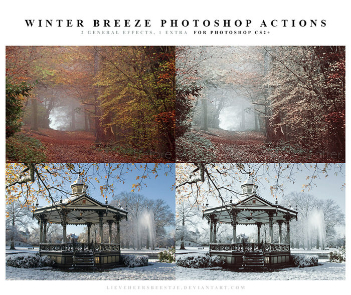 Winter Breeze Actions