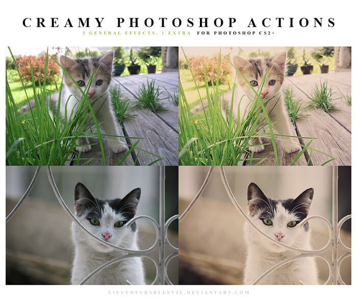 Creamy Photoshop Actions